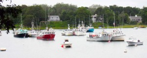 The Gift of Music as Therapy on Cape Cod